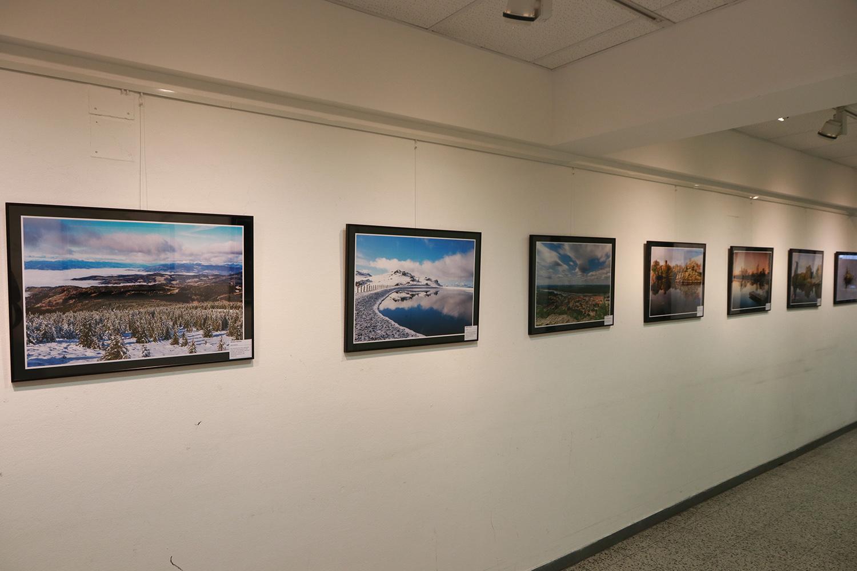 Ausstellung 005