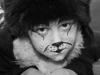 Christian Schleinzer - Cats
