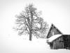 Christian Schleinzer - Schneetreiben