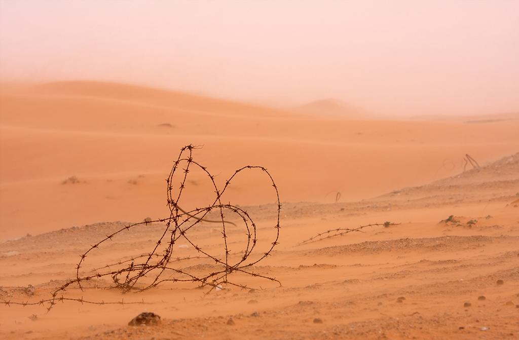 Steven Kratochwill - Sandsturm