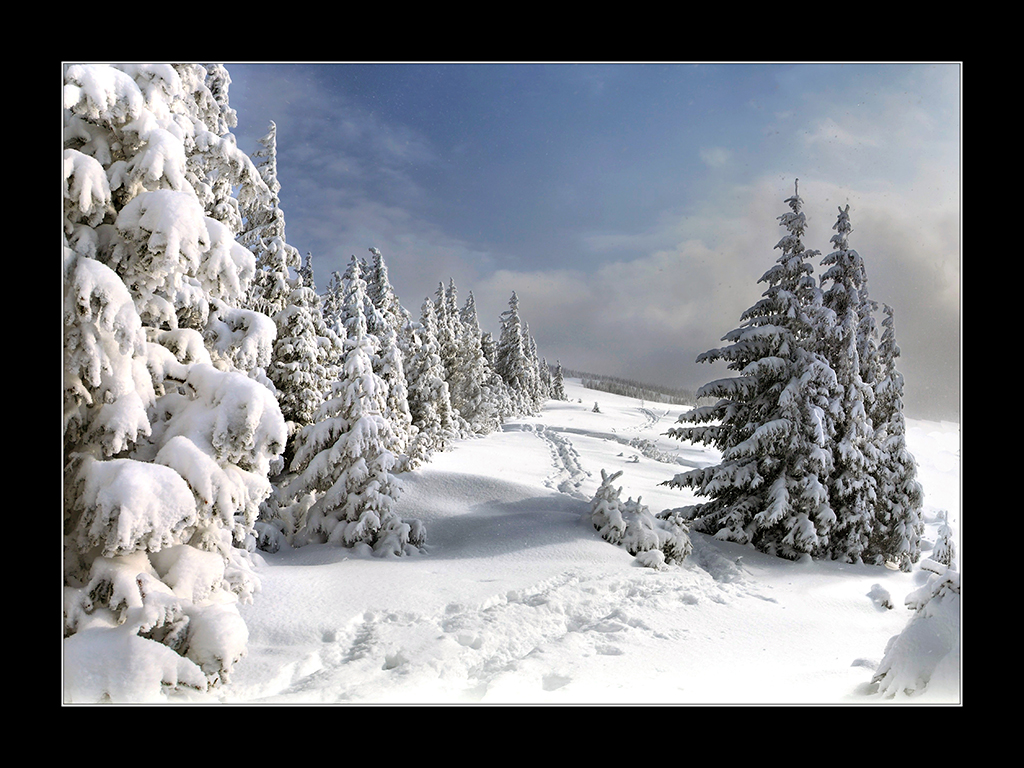 Robert Nykodym - Steirische Winterlandschaft