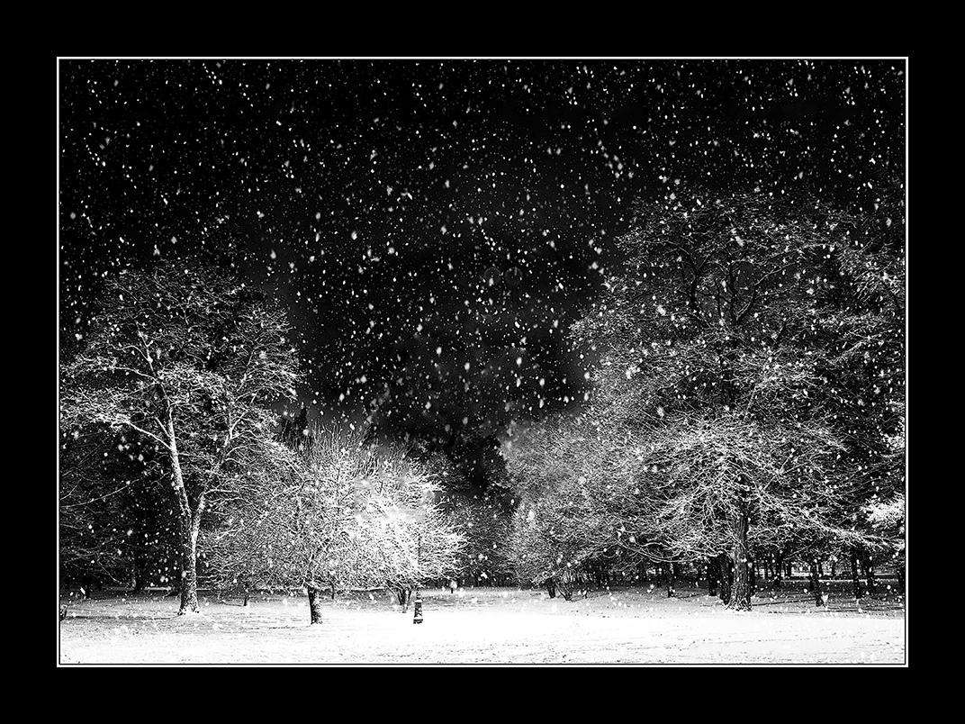 Robert Nykodym - Winternacht im Park